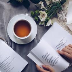 Traducción profesional de poesía (EN-ES)