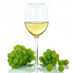 Traducción vitivinícola y enológica EN-ES
